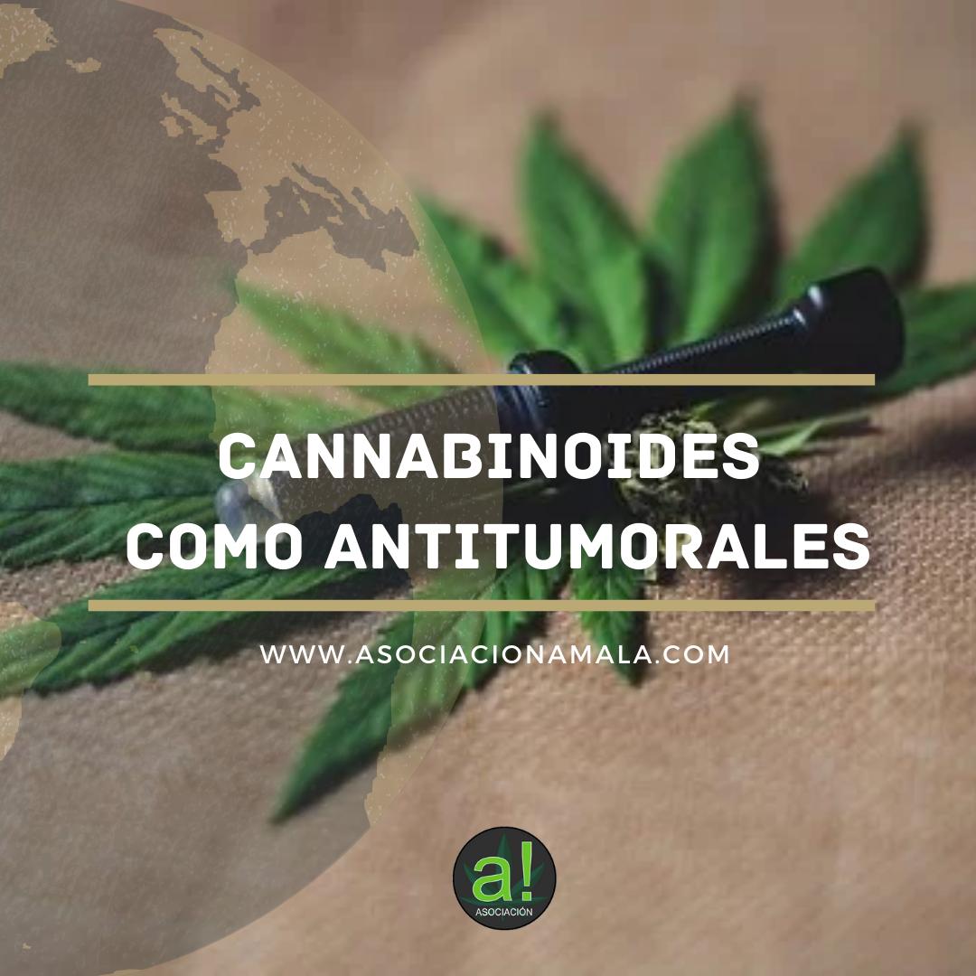 Cannabinoides como antitumorales