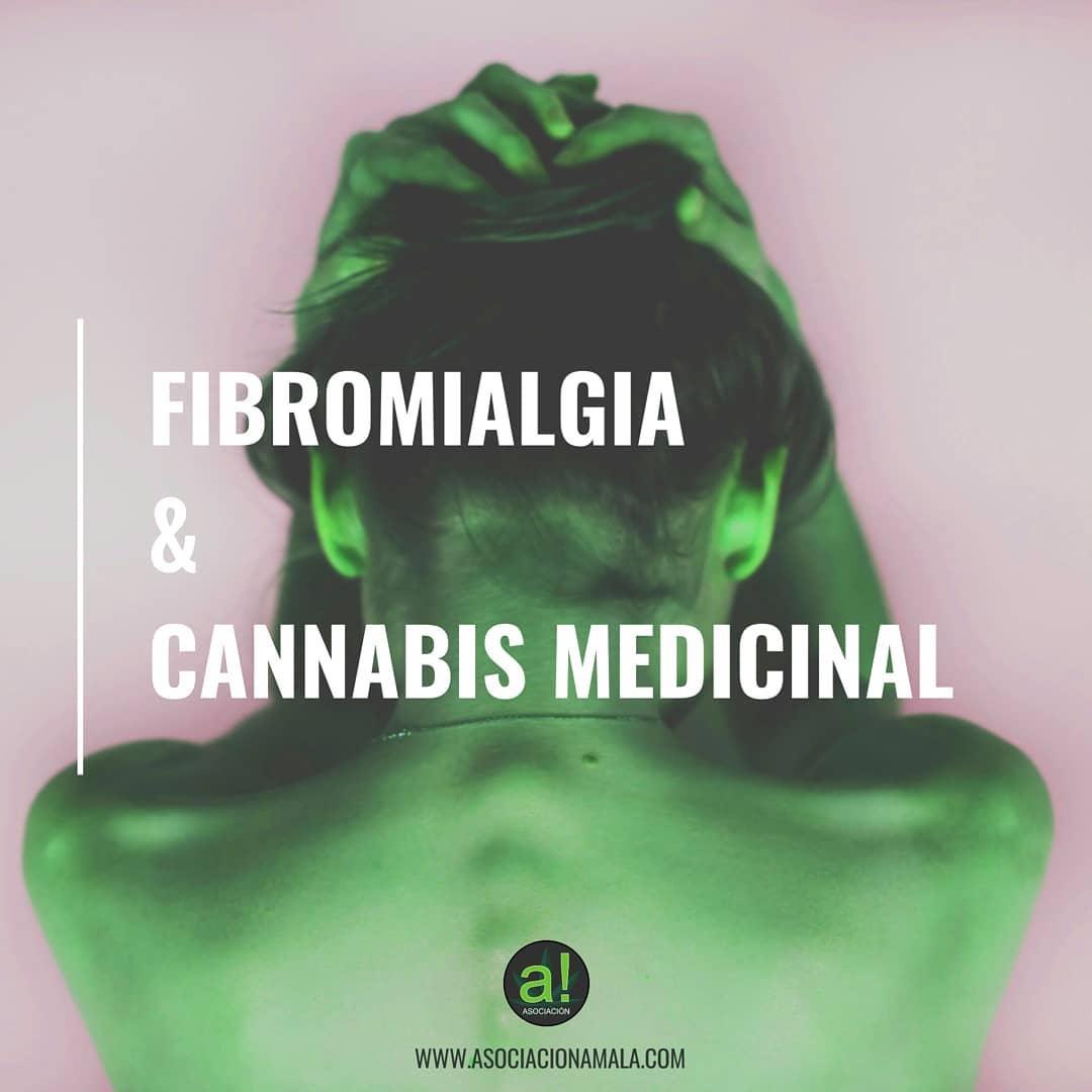 fibromialgia y cannabis medicinal