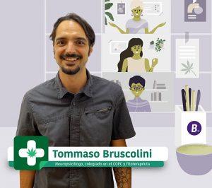 Tomasso Bruscolini Programa Smoking Map