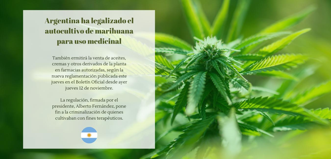 Argentina ha legalizado el autocultivo de marihuana para uso medicinal