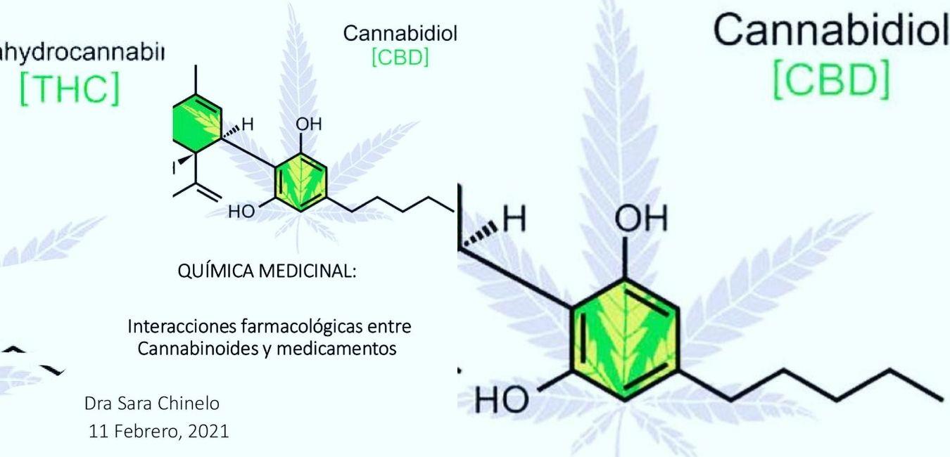 Interacciones farmacológicas del cannabis con medicamentos
