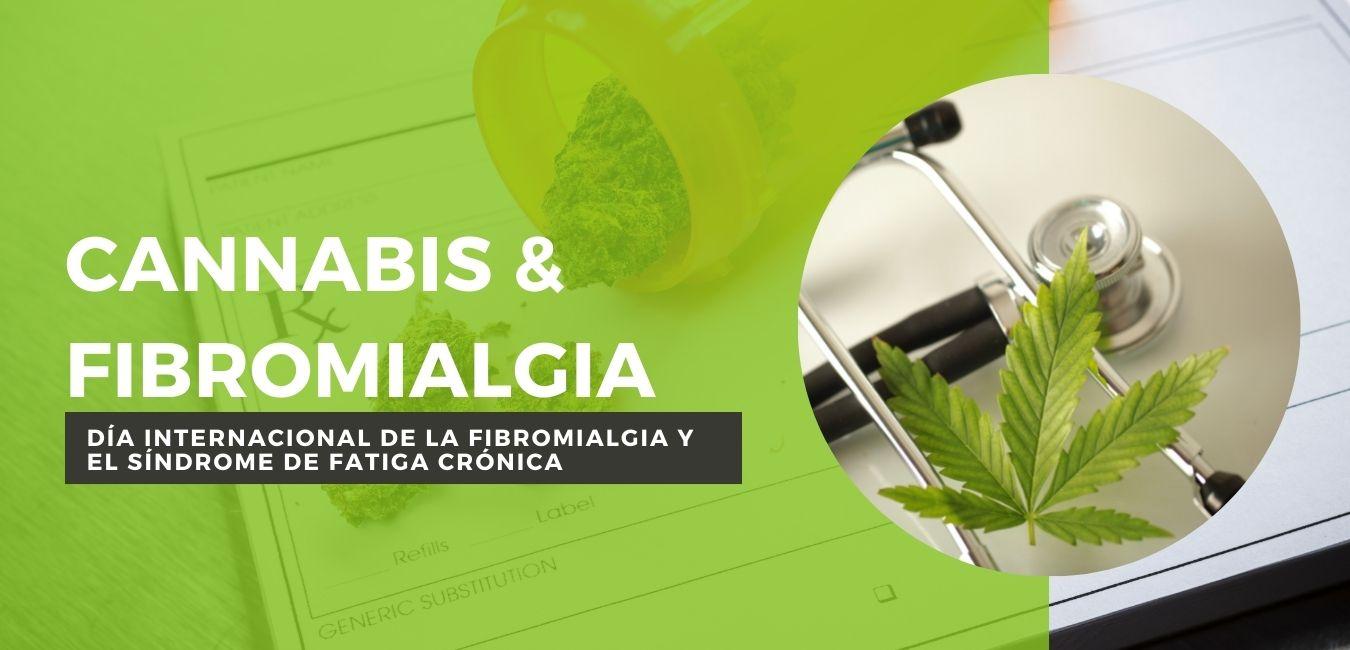cannabis y fibromialgia