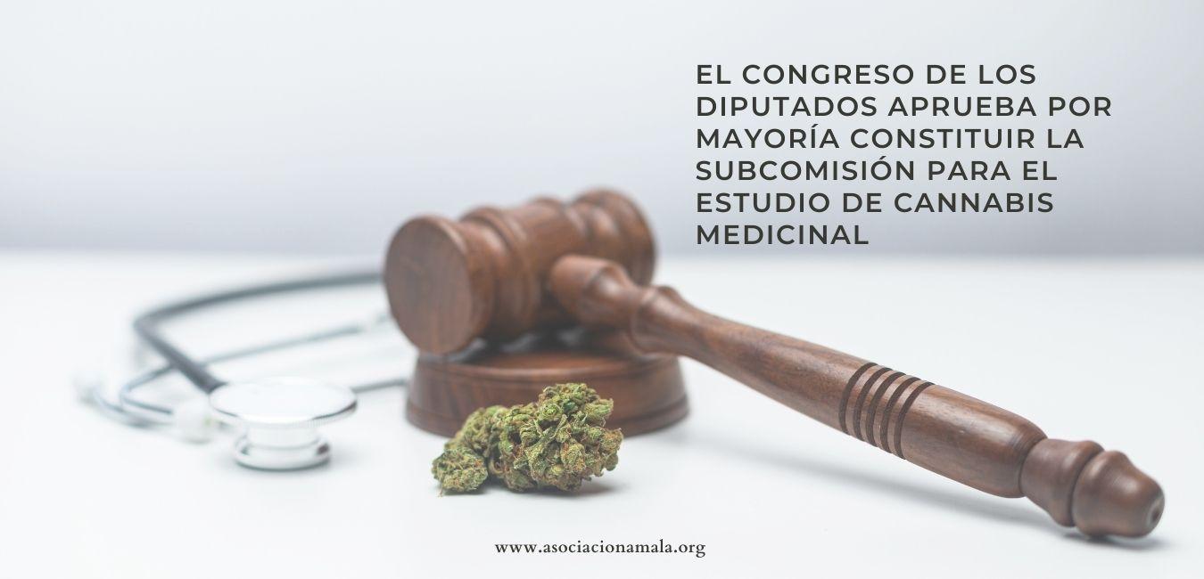 El congreso de los diputados aprueba por mayoría constituir la subcomisión para el estudio de Cannabis Medicinal