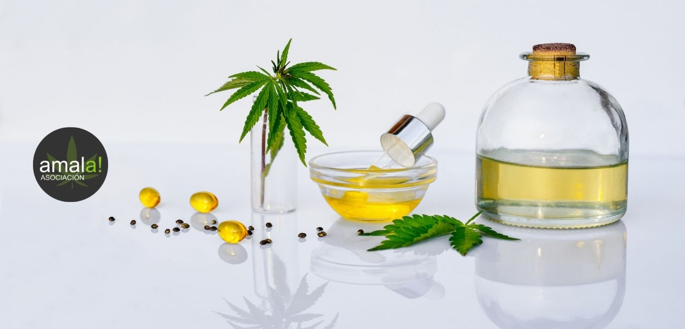 Tintura de cannabis con glicerina de grado farmacéutico
