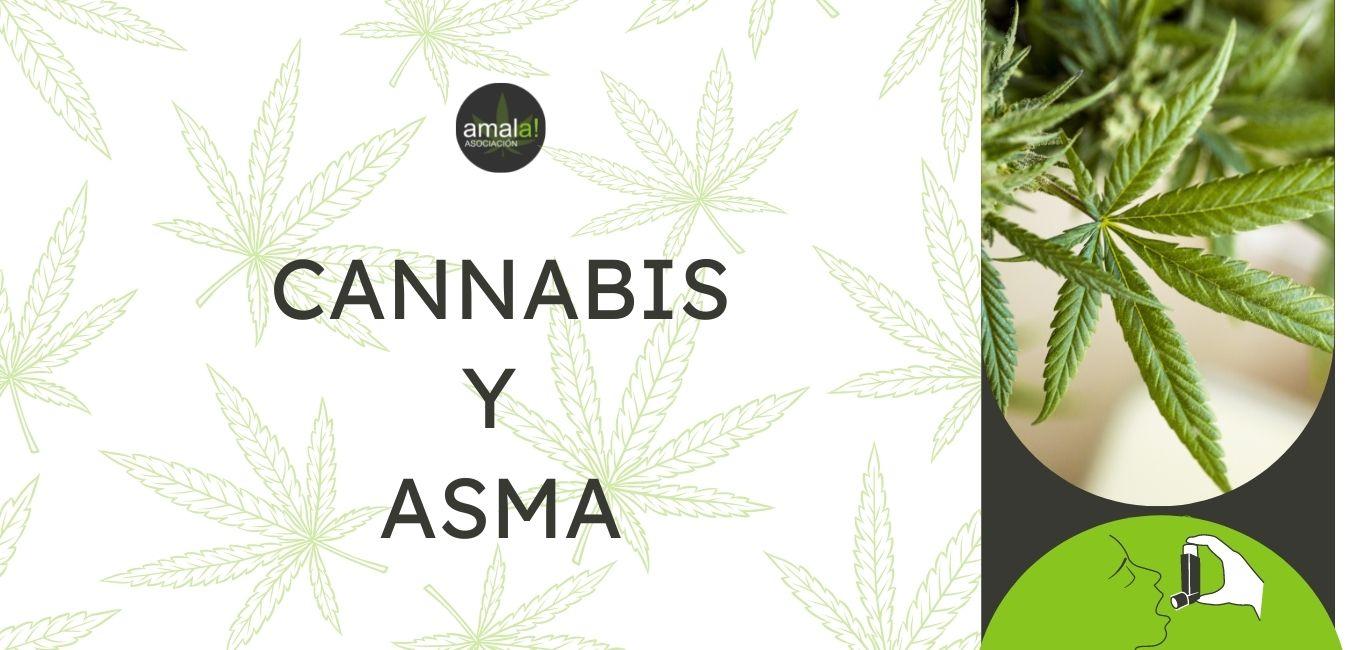 cannabis en el tratamiento del asma